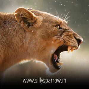 dangerous status in hindi